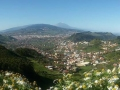 Tenerife On the Road